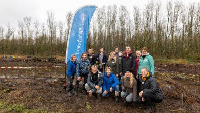 Photo of Zwolse kaartenwebshop Kaartje2go plant 1.000 eigen bomen