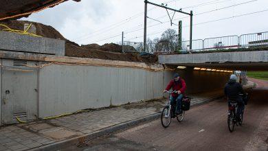 Photo of Hortensiatunnel krijgt 'lichtkoepel' voor veiliger gevoel