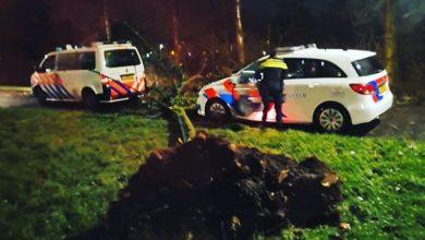 Photo of Wijkagenten Zwolle Zuid net niet getroffen door boom