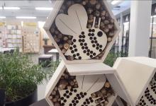 Photo of Cibap studenten ontwerpen bijenhotel voor boerenerf