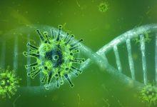 Photo of RIVM start onderzoek naar groepsimmuniteit coronavirus