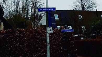 Photo of Drie inbrekers op heterdaad betrapt in Zwolle-Zuid