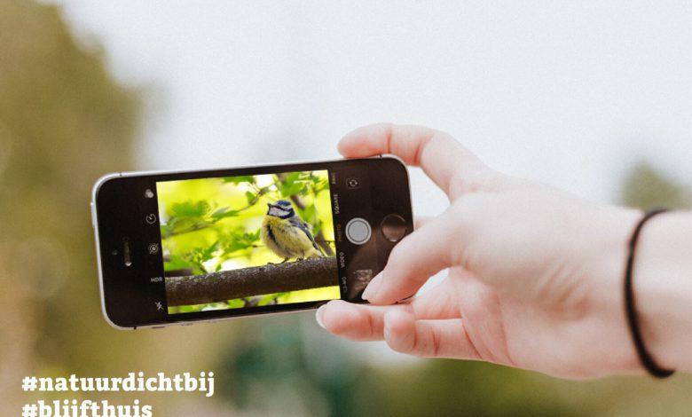 Photo of Blijf thuis en doe mee met de #natuurdichtbij fotochallenge