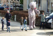 Photo of Een beer op jacht aan de Sloetmarke Zwolle-Zuid