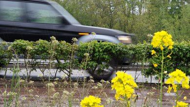 Photo of Particuliere autobezit in Zwolle laagste van Overijssel