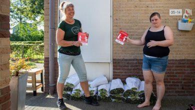 Photo of Stichting Present bezorgt samen met partners 4.400 bossen tulpen