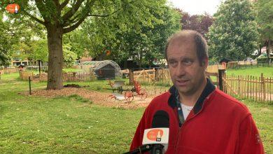 Photo of Stichting de Knuffelkonijntjes werkt hard aan nieuwe dierenweide in Dieze-Oost