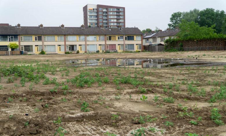 Photo of Verslag gemeenteraadsvergadering over vastgoed en grondbeleid