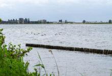 Photo of Toch geen blauwalg in Milligerplas; water is veilig om te zwemmen