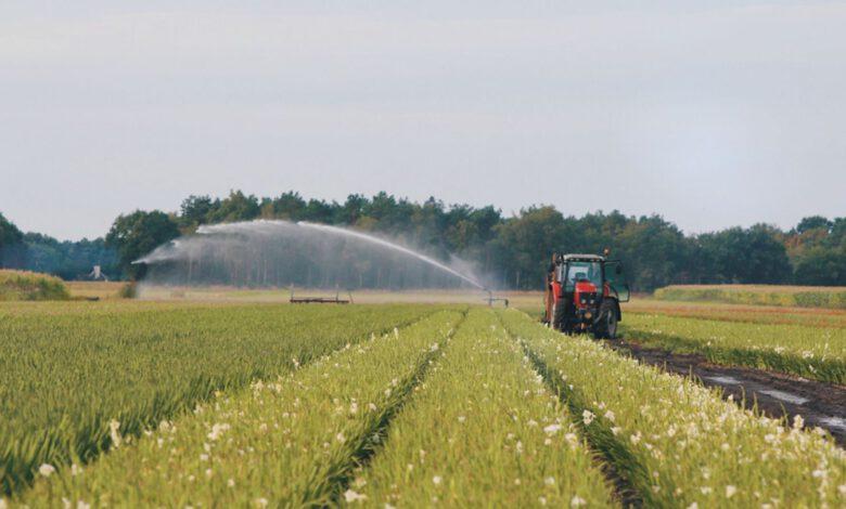 Photo of Update droogte: waterschap zet zeilen bij en is alert