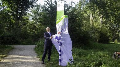 Photo of Gemeente en ROVA beproeven ander maaibeleid om biodiversiteit te vergroten