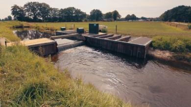 Photo of Grondwaterstanden herstellen verder dankzij buien