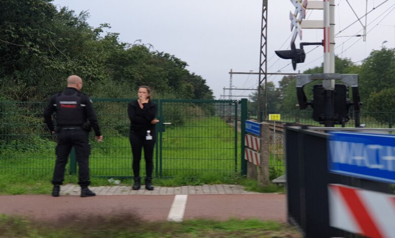Photo of ProRail controleert overwegen in Zwolle om risico's te verkleinen