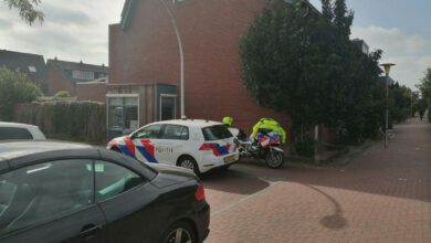 Photo of Meisje gebeten door hond in Stadshagen