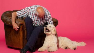 Photo of Ledenadviseur en contacthond uniek duo in zorg voor mensen met dementie