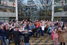 Photo of Online open dag Gymnasium Celeanum