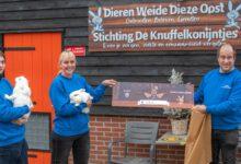 Photo of Junior Kamer Zwolle helpt Stichting Knuffelkonijntjes