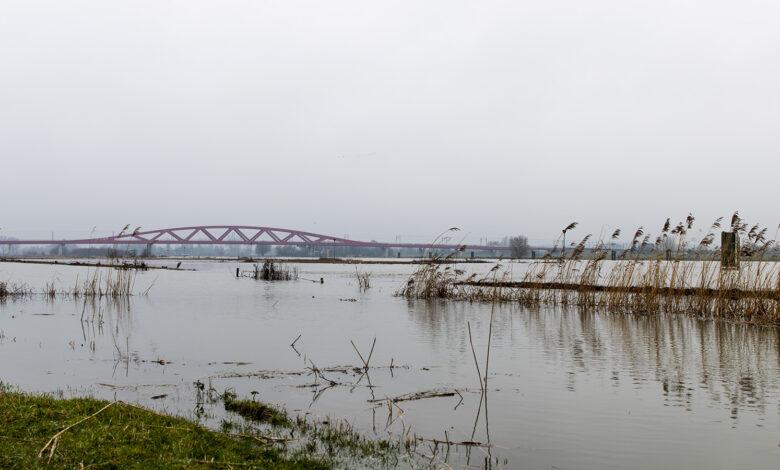 Photo of IJssel bij Zwolle stijgt eind van de week naar 1 meter 89 boven NAP