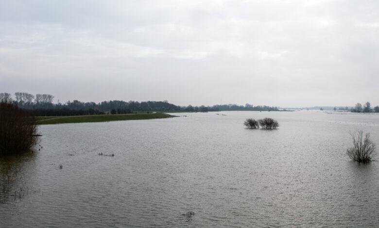 Photo of Dag van de Ijssel