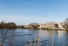 Photo of Het Rijk investeert 3,3 miljoen euro in Zwartewaterallee