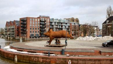Photo of Kunstwerk 'Ode aan het varken' staat tijdelijk op het Rodetorenplein