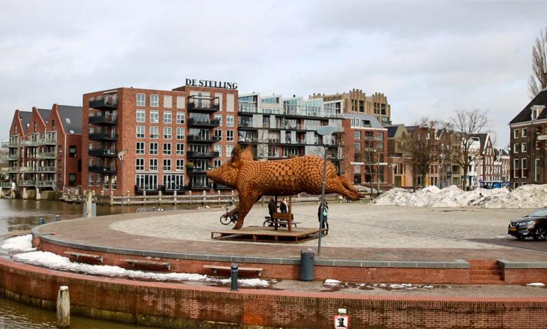 Photo of Ode aan het varken: een nieuw kunstwerk in Zwolle
