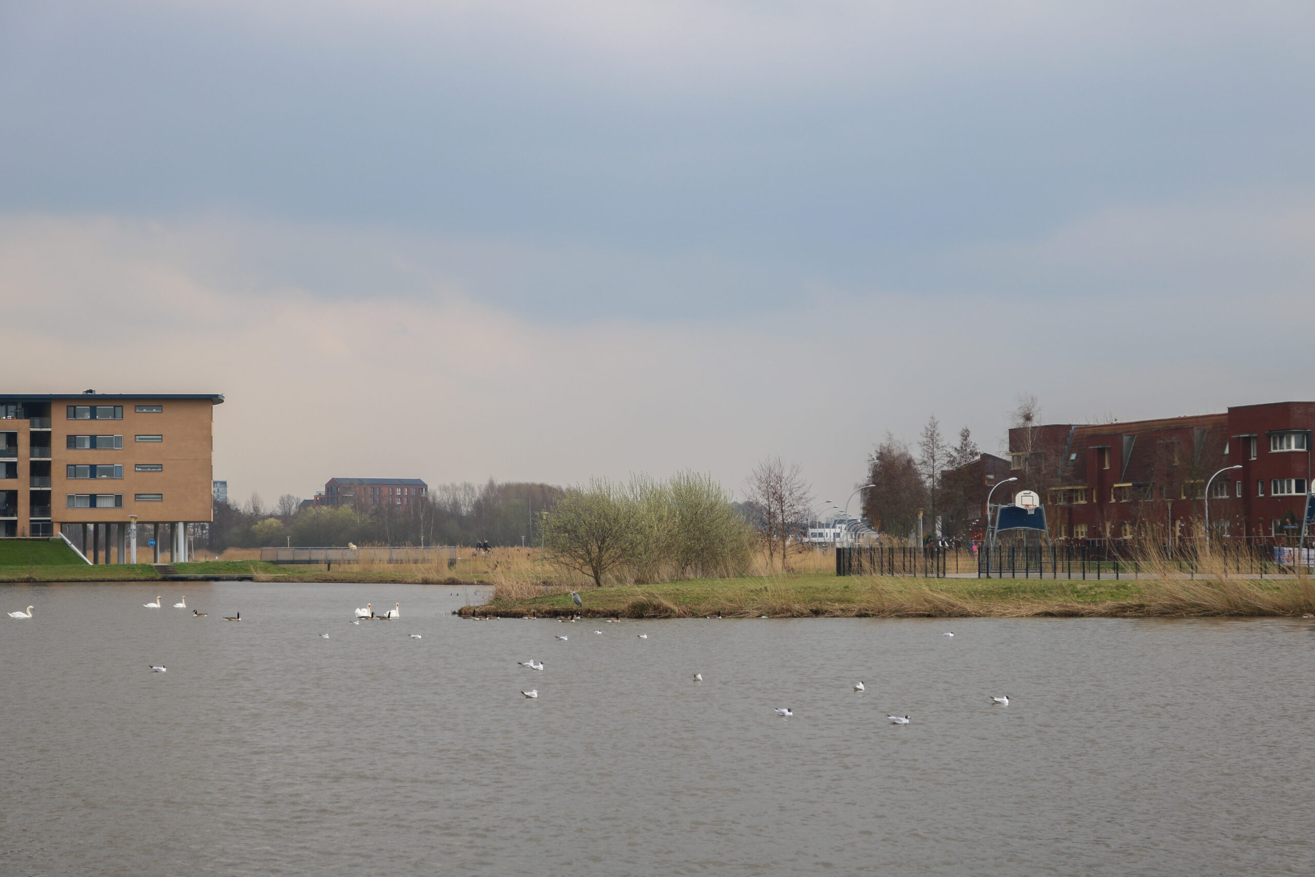 Photo of Openluchtconcert Stadshagen wordt doorgeschoven naar juni 2022