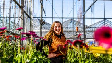 Photo of Leerling Zone College wordt tweede bij het Nederlands Kampioenschap bloembinderij