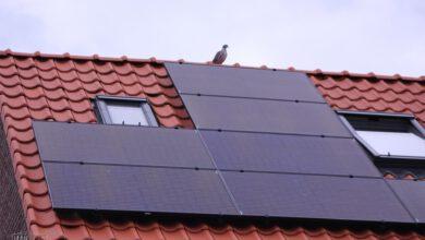 Photo of Zonnepanelen voor Dieze-Oost dankzij WijBedrijf Dieze