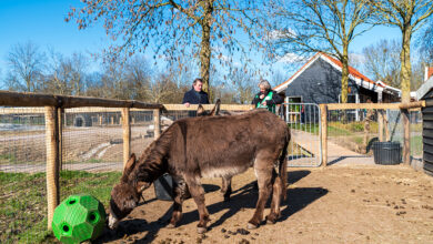 Photo of Wethouder René de Heer bezoekt Wijkboerderij Eemhoeve tijdens Tweedaagse van de Verbinding