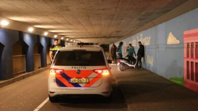 Photo of Scooterrijder en hond onderuit in Van Karnebeektunnel