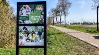 Photo of Steeds meer gedumpte dieren volgens Stichting Flappus