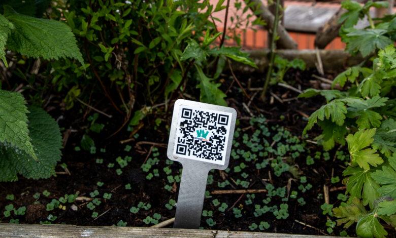 Photo of Leren over groenten via QR-codes op het Lübeckplein