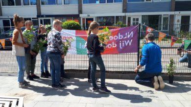 Photo of Een groener schoolplein namens ZwolleDoet