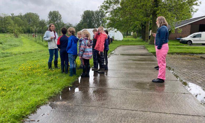 Photo of Kersverse pluk-fruittuin breidt uit met hulp van kinderen