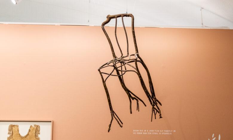 Photo of Een LP van koeienbloed, meubels gemaakt van insecten: nieuwe tentoonstelling in Fundatie
