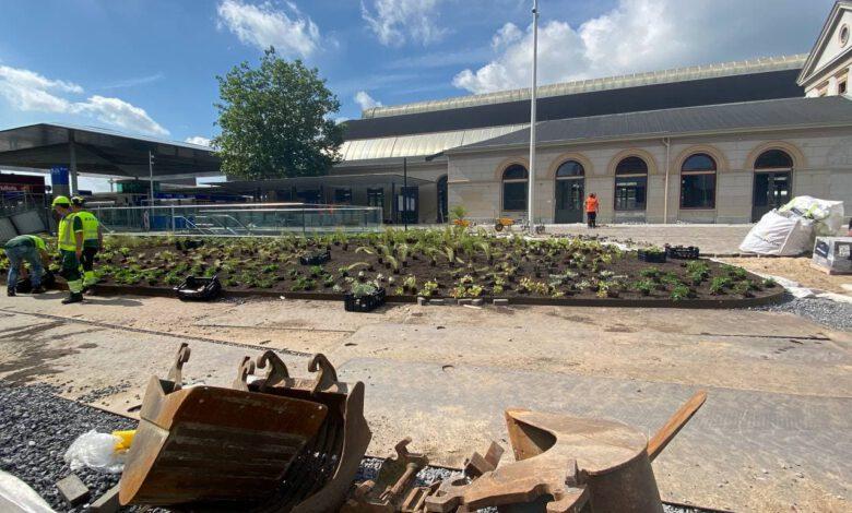 Photo of Zwolle in beeld: omgeving station wordt steeds groener