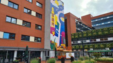 Photo of 330 vierkante meter hoge muurschildering op gevel Lübeckplein
