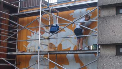 Photo of Grootste muurschildering met luchtzuiverende verf bij Stadkamer in Zwolle