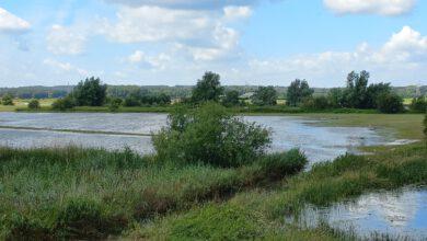 Photo of IVN klimaatcursus De Groene Verandering