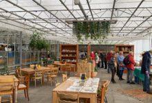 Photo of Tussen de knollen en gewassen: Najaarstuinmarkt bij de Kas van Kaat